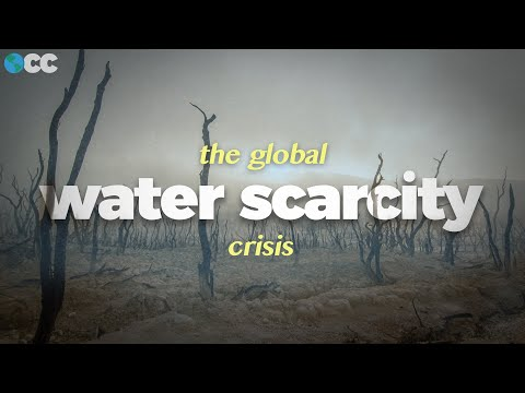 Our Global Water Crisis, Explained.