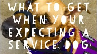 What to get when your expecting a service dog
