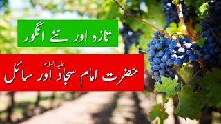 Imam Sajjad (as) & Fresh Grapes   Beggar & Fresh Fruit Grapes   Lisaanullah Media