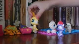 The Littlest Pet Shop: Надоели уроки