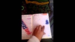 Мой личный дневник №1 ЛД (С комментариями!)