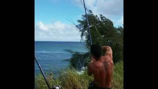 tag it ulua tagging big island action