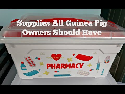 Medical Care Kit For Guinea Pigs