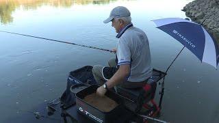 Trabucco TV - Match Fishing - Le Alborelle Giganti del fiume Po