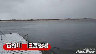 石狩川 旧渡船場でカワカレイ爆釣します、ハゼやウグイも釣れます😊