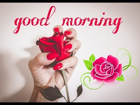 Sweet cute good morning wishes tagged videos midnight news good morning sweet good morning wishes video m4hsunfo