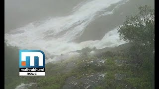 Water Levels Of Pamba River Rises: Kakki Dam Shutters Opened| Mathrubhumi News