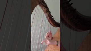 House of the Rising Sun-Harp