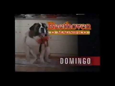 Trailer do filme Beethoven - O Magnífico