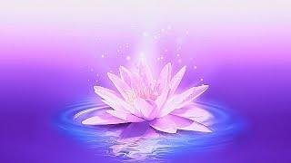 30 Minute Meditation Music for Positive Energy ➤ Balance & Harmony Music ➤ Relax Mind Body