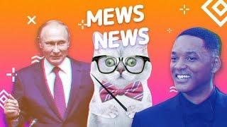 Mews News: День учителя