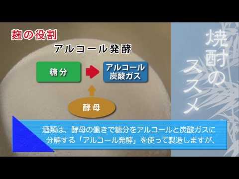 3-1.本格焼酎ができるまで ① ~麹の役割と麹造り~