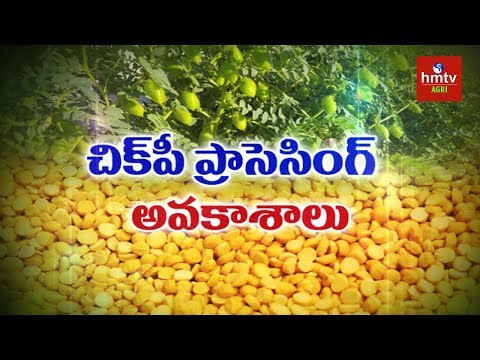 Chickpeas Processing Guide By Mynampati Sreenivasa Rao | Food Processing | hmtv Agri