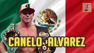 Canelo Alvarez since losing against Floyd Mayweather Jr