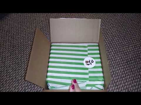 Kate Spade Unboxing Cameron Street Lainie