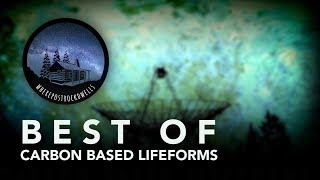 Best of Carbon Based Lifeforms
