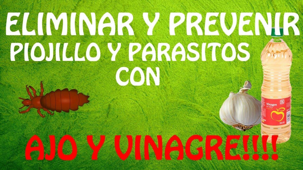 el vinagre matará a los parásitos