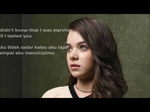 Hailee Steinfeld, Grey - Starving Ft. Zedd (video Lirik + Terjemahan Indonesia)
