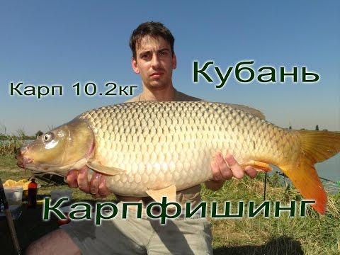 зимняя рыбалка на карпа - 2016-09-20 01:40:01