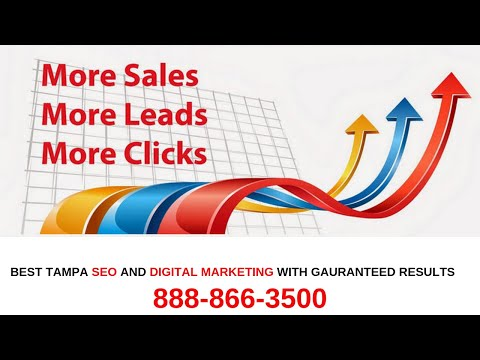 SEO Digital Marketing Tampa FL. 888-866-3500