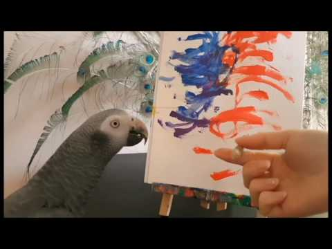 My parrot makes a painting