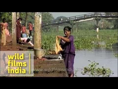 Washing clothes the Mallu way- Kerala Village thumbnail