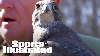 super bowl li the real atlanta falcon   mmqb   sports illustrated