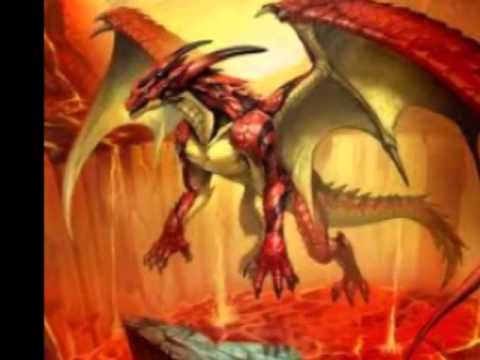 Elegant Awesome Dragon Pictures