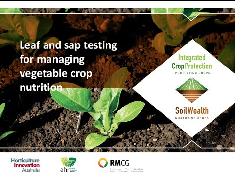 Leaf And Sap Testing For Managing Vegetable Crop Nutrition