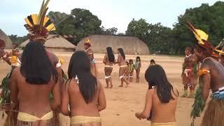 Pesta Gadis Ritual Adat Suku Di Brazil