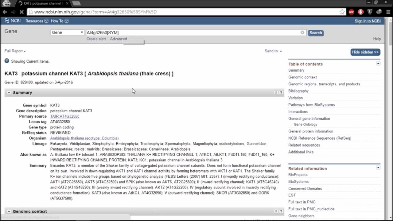 How to find a Nucleotide Sequence in NCBI    Saqib Studios - YouTube