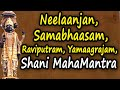 Shree Shani Mahamantra At Shree Shanidham Asola New Delhi