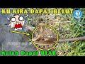 Gambar cover MANCING BELUT MALAH DAPAT ULAR KOBRA - Ngurek belut - Untung  Bukan GERAGA