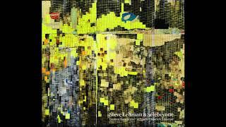 Steve Lehman & Sélébéyone - Origine