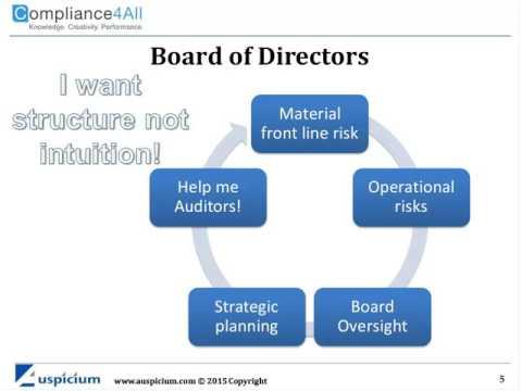 Auditing Enterprise Risk Management