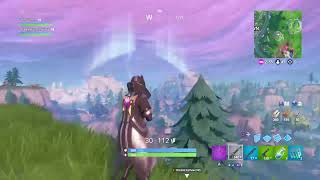 Fortnite trying to get win