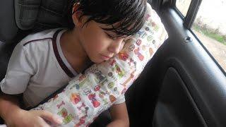 Almofada para cinto de segurança de criança