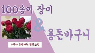 【경주꽃배달 초아꽃】백송이장미|용돈꽃바구니|돈꽃바구니|…