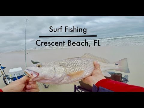 Catching Every Color Of Fish Surf Fishing - Crescent Beach, FL