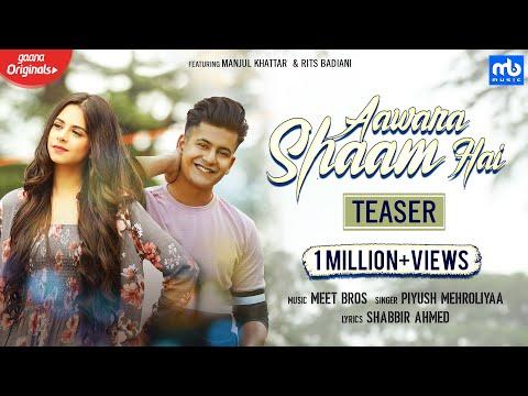 aawara-shaam-hai-|teaser|-meet-bros,-piyush-mehroliyaa-|gaana-originals|-manjul,rits-badiani,shabbir
