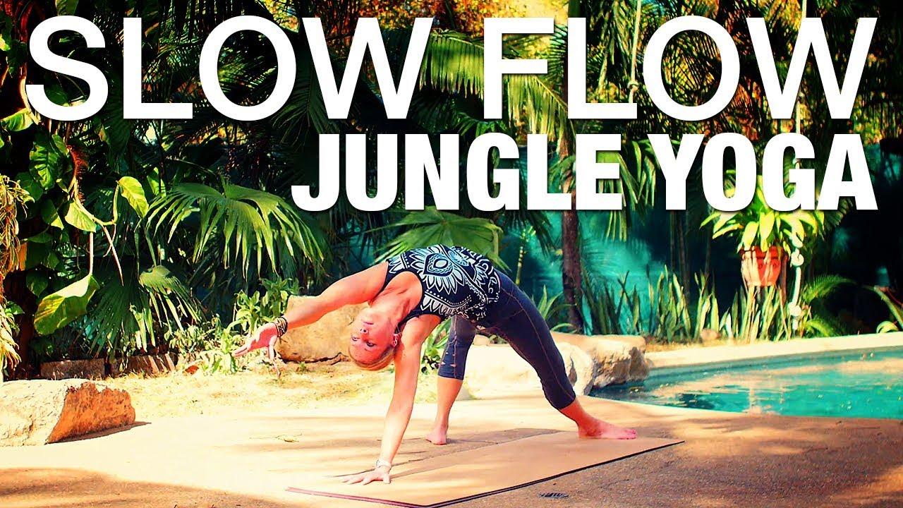 be890d0e3336d Slow Flow Jungle Yoga Class - Five Parks Yoga - YouTube