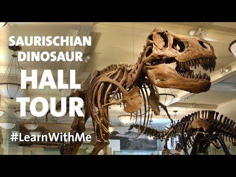 Hall Tour – Saurischian Dinosaurs 🦖