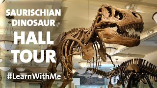 Tour the Hall of Saurischian Dinosaurs  at the American Museum of Natural History!