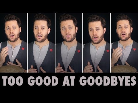 Too Good at Goodbyes - A Cappella - Sam Smith - Nick Pitera (cover)