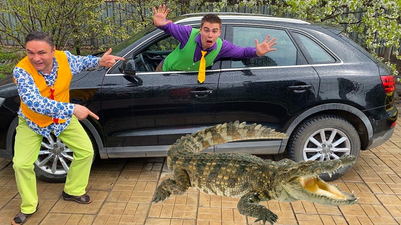 Older Mr. Joe on Camaro put Crocodile in Car VS Mr. Joe on Audi Q3 VS Crocodile 13+