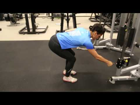 Triceps - Standing Cable kick Back Variation