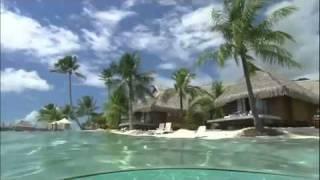 Enya - Wild Child & Caribbean Blue [Tropical HD]