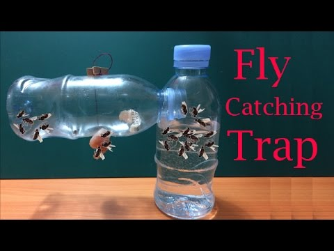 how to make fly trap at home easily to catch hundreds of fly in days creative channel youtube. Black Bedroom Furniture Sets. Home Design Ideas