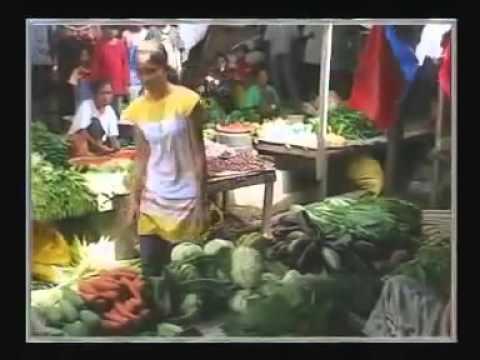Jamilah  Lagu Reggae Daerah Ende Flores NTT - Indonesia