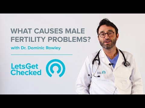 What Causes Male Fertility Problems? | Male Infertility Explained